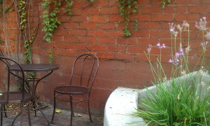 Photo of Cafe Patio where Terry wrote Light 2.0